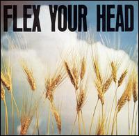 AA.VV. - Flex Your Head
